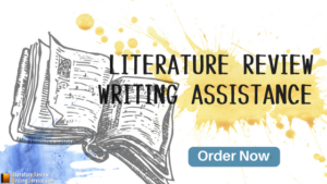 Best Literature Review Writers